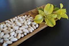 Una vez que las nueces han sido procesadas, no esperes nada menos que una aventura llena de sabor.